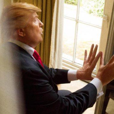 Donald Trump Look Alike