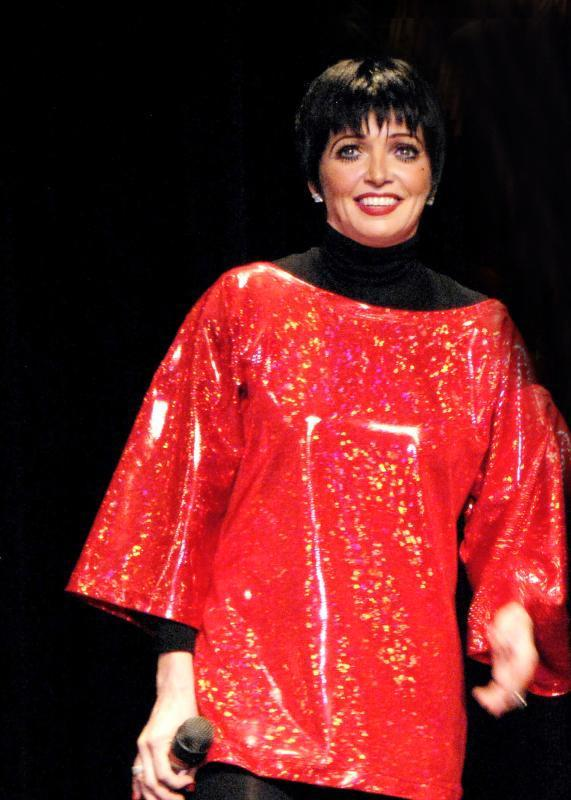 Liza Minnelli - Mirror Images